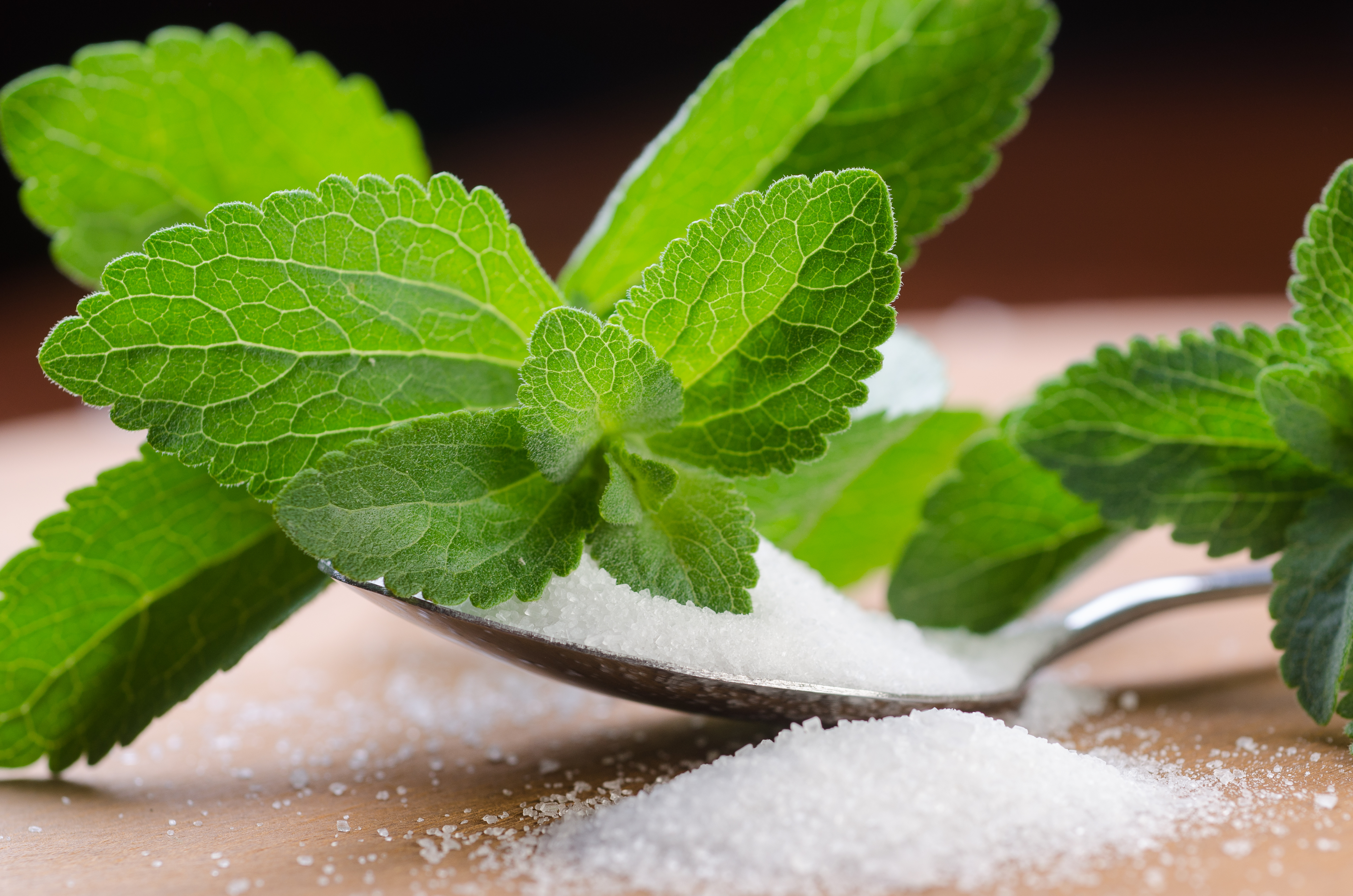 Benefits of Stevia as a Sugar Substitute